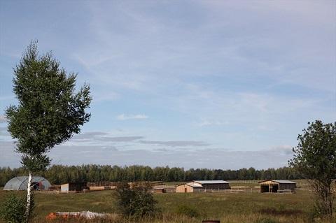 0B03B8C3 ферма.jpg